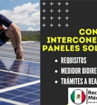 paneles solares interconexion